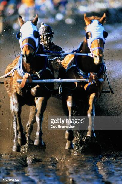 Harness racing, driver covered in mud
