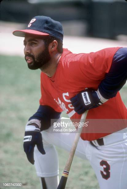Harold Baines of the Chicago White Sox looks on during batting practice prior to the start of an Major League Baseball game circa 1985 at Comiskey...