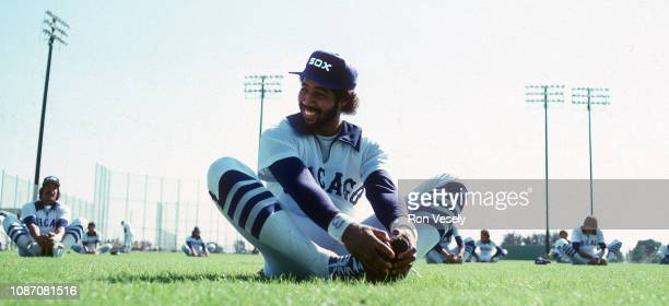 Harold Baines of the Chicago White Sox looks on while stretching during spring training in Sarasota Florida Baines played for the White Sox from...