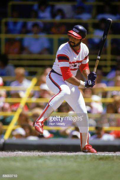 Harold Baines of the Chicago White Sox readies to swing at the ball during a game Harold Baines played for the Chicago White Sox from 19801989