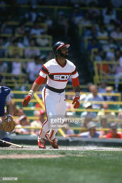 Harold Baines of the Chicago White Sox watches the flight of the ball during a season game Harold Baines played for the Chicago White Sox from...
