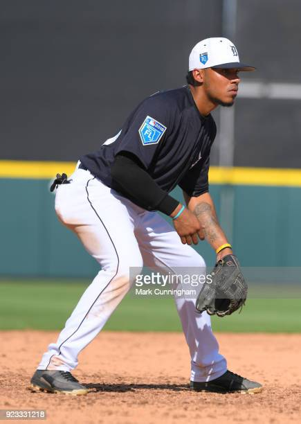 Harold Castro of the Detroit Tigers fields during the game against the Florida Southern Mocs at Publix Field at Joker Marchant Stadium on February 22...