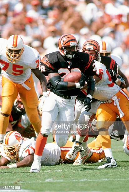 Harold Green of the Cincinnati Bengals carries the ball against the Tampa Bay Buccaneers during an NFL football game October 8 1995 at Tampa Stadium...