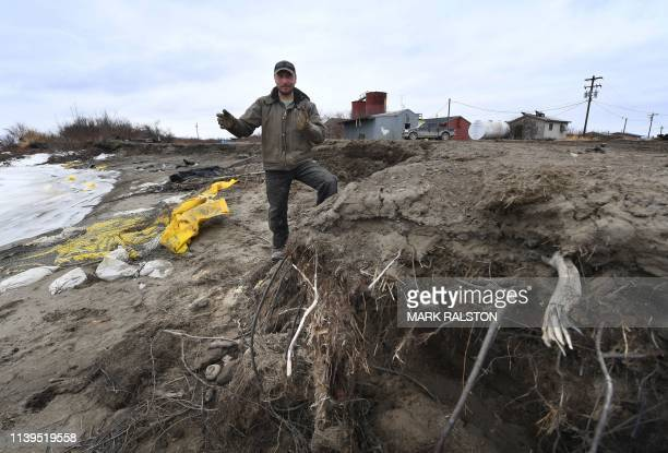 TOPSHOT Harold Ilmar who is in charge of attempting to stop the severe erosion of the permafrost tundra walks through the coast at the climate change...