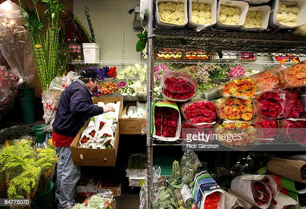 Harold inspects flowers the day before Valentines day in the flower district on February 13 2009 in the Manhattan borough of New York City The...