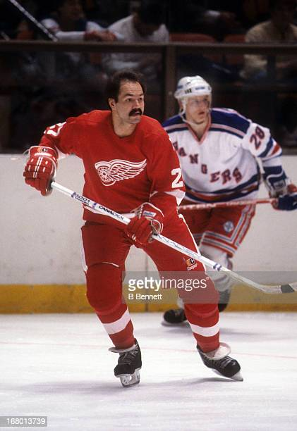 Harold Snepsts of the Detroit Red Wings skates on the ice during an NHL game against the New York Rangers on December 23 1985 at the Madison Square...
