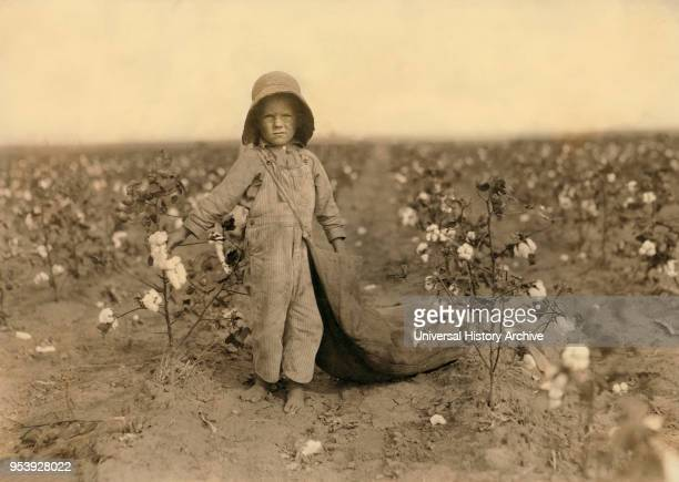 Harold Walker 5 years old FullLength Portrait Cotton Picker Comanche County Oklahoma USA Lewis Hine for National Child Labor Committee October 1916