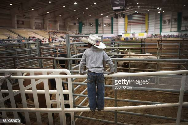 Harold Williams Jr watches activity in the arena before the start of competition at the Bill Pickett Invitational Rodeo on March 31 2017 in Memphis...