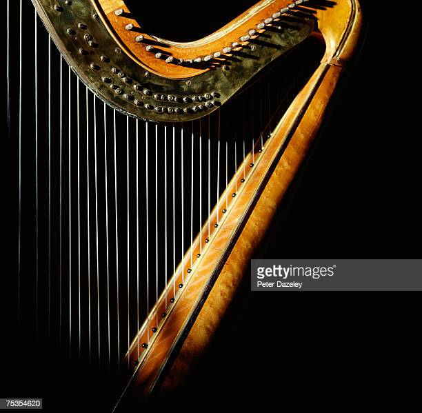 harp in sunlight - stringed instrument stock pictures, royalty-free photos & images