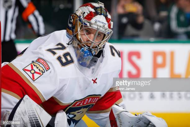 Harri Sateri of the Florida Panthers tends goal against the Dallas Stars at the American Airlines Center on January 23 2018 in Dallas Texas