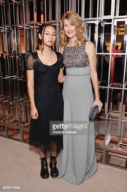 Harris Harper and actress Laura Dern attend Glamour Women Of The Year 2016 at NeueHouse Hollywood on November 14 2016 in Los Angeles California