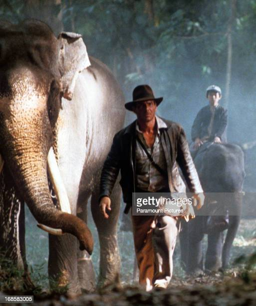 Harrison Ford and Jonathan Ke Quan walk with elephants in a scene from the film 'Indiana Jones And The Temple Of Doom' 1984