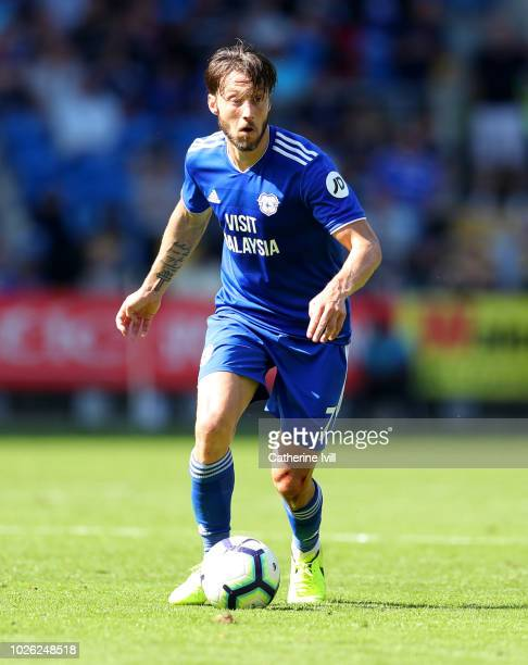 Harry Arter of Cardiff City during the Premier League match between Cardiff City and Arsenal FC at Cardiff City Stadium on September 2 2018 in...