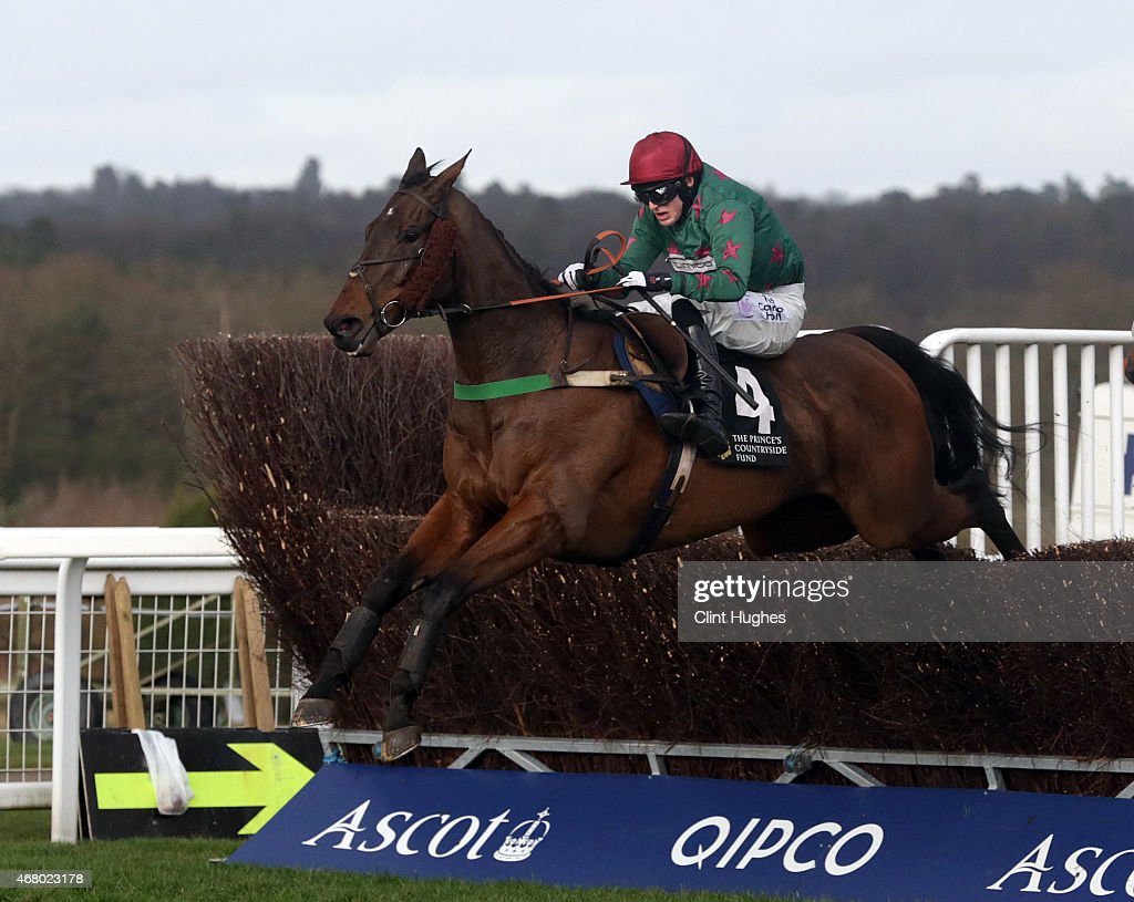 Harry Bannister riding Calgary Bay clears the last fence and wins the Sir Ray Tindle Open Hunters Steeple Chase at Ascot Racecourse on March 29, 2015 in Ascot, England.