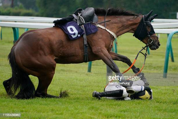 Harry Bannister riding Sitron fall during The Sky Sports Racing Sky 415 Mares' Novices' Hurdle at Fontwell Park Racecourse on June 12 2019 in...