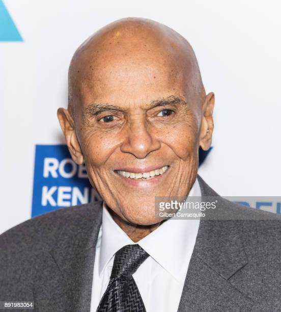 Harry Belafonte attends Robert F. Kennedy Human Rights Hosts Annual Ripple Of Hope Awards Dinner at New York Hilton on December 13, 2017 in New York...
