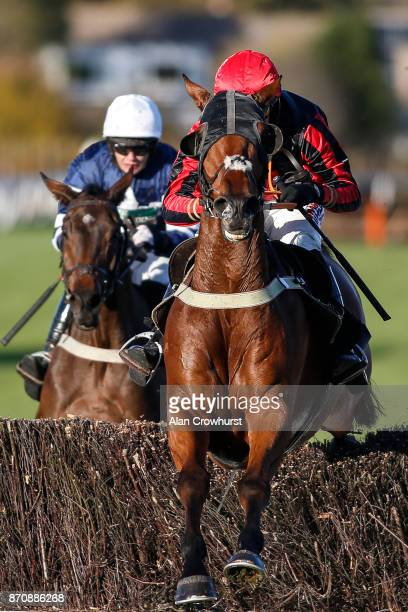 Harry Cobden riding Cucklington clear the last to win The Free Tips Daily On attheracescom Novices Handicap Steeple Chase at Plumpton racecourse on...
