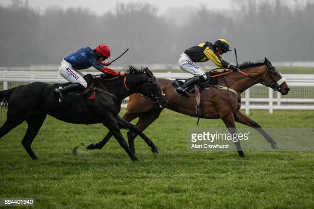 Harry Cobden riding Elegant Escape clear the last to win The Ladbrokes John Francome Novices Steeple Chase from Black Corton at Newbury racecourse on...