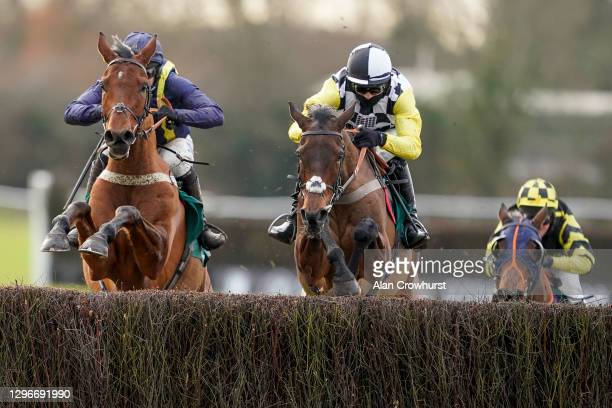 Harry Cobden riding Next Destination clear the last to win The McCoy Contractors Civils And Infrastructure Hampton Novices' Chase from Jonjo O'Neill...