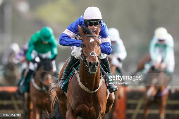 Harry Cobden riding Solo clear the last to win The Weatherbys Cheltenham Festival Betting Guide Adonis Juvenile Hurdle at Kempton Park Racecourse on...