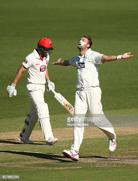 Harry Conway of the NSW Blues celebrates after taking the wicket of Sam Raphael of the SA Redbacks during day two of the Sheffield Shield match...