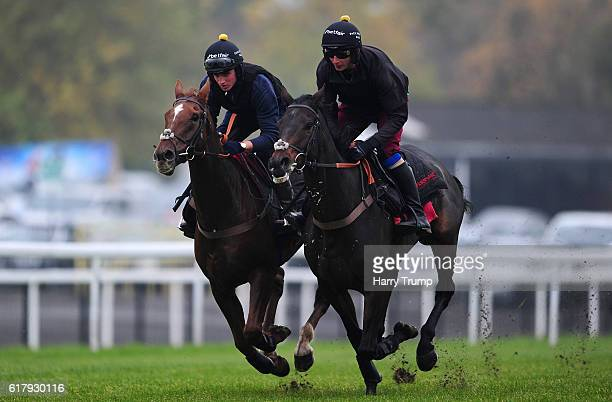 Harry Derham on board Silviniaco Conti and Andrew Doyle on board Ptit Zig during a Paul Nicholls Yard Gallop at Chepstow Racecourse on October 25...