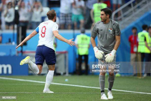 Harry Kane of England celebrates scoring a penalty to make it 20 during the 2018 FIFA World Cup Russia group G match between England and Panama at...