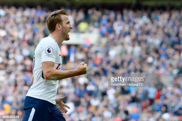 Harry Kane of Tottenham Hostpur celebrates after scoring during the Premier League match between Tottenham Hotspur and Leicester City at Wembley...