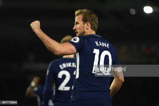 Harry Kane of Tottenham Hotspur celebrates after he scores his sides first goal during the Premier League match between Brighton and Hove Albion and...
