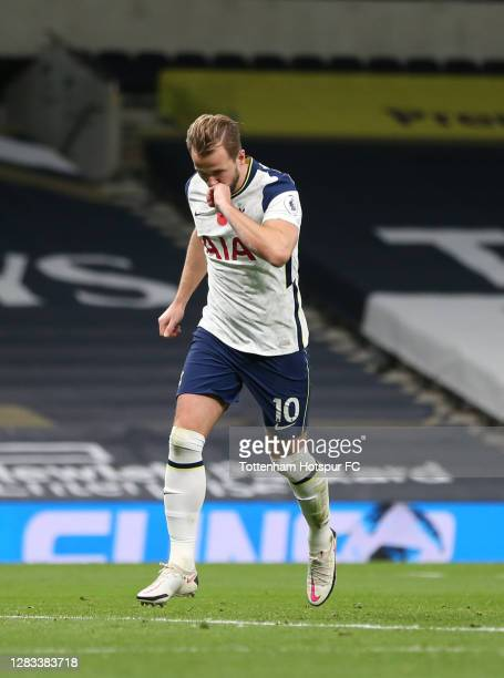 Harry Kane of Tottenham Hotspur celebrates after scoring his sides first goal during the Premier League match between Tottenham Hotspur and Brighton...