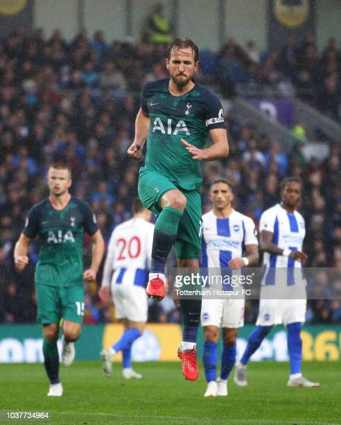 Harry Kane of Tottenham Hotspur celebrates after scoring his team's first goal during the Premier League match between Brighton Hove Albion and...