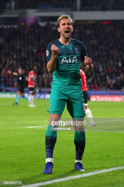 Harry Kane of Tottenham Hotspur celebrates after scoring his team's second goal during the Group B match of the UEFA Champions League between PSV and...