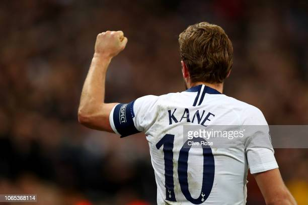 Harry Kane of Tottenham Hotspur celebrates after scoring his team's second goalduring the Group B match of the UEFA Champions League between...