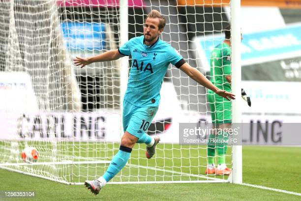 Harry Kane of Tottenham Hotspur celebrates after scoring his teams second goal during the Premier League match between Newcastle United and Tottenham...