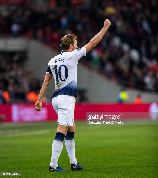 Harry Kane of Tottenham Hotspur celebrates after scoring the second goal during the Group B match of the UEFA Champions League between Tottenham...