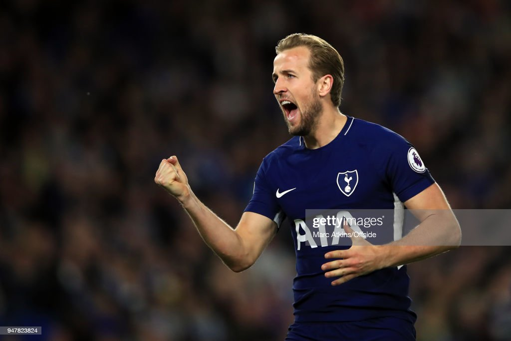 Harry Kane of Tottenham Hotspur celebrates during the Premier League match between Brighton and Hove Albion and Tottenham Hotspur at Amex Stadium on April 17, 2018 in Brighton, England.