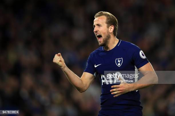 Harry Kane of Tottenham Hotspur celebrates during the Premier League match between Brighton and Hove Albion and Tottenham Hotspur at Amex Stadium on...