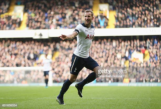 Harry Kane of Tottenham Hotspur celebrates scoring his sides first goal during the Premier League match between Tottenham Hotspur and West Bromwich...