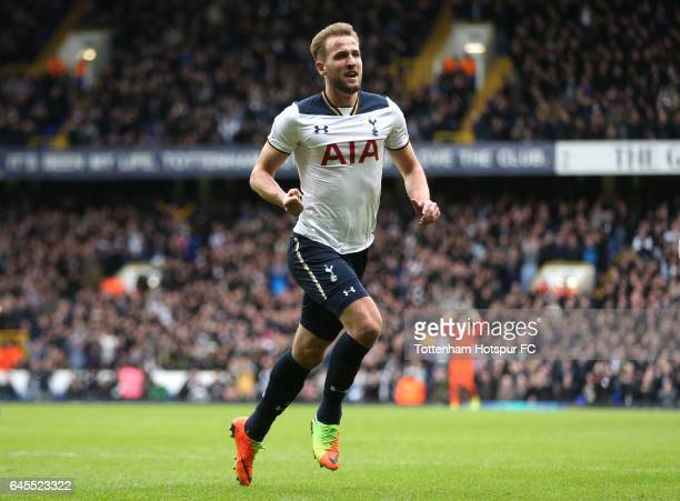 Harry Kane of Tottenham Hotspur celebrates scoring his teams second goal during the Premier League match between Tottenham Hotspur and Stoke City at...