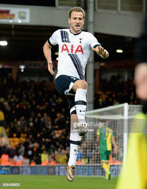 Harry Kane of Tottenham Hotspur celebrates scoring their third goal during the Barclays Premier League match between Norwich City and Tottenham...