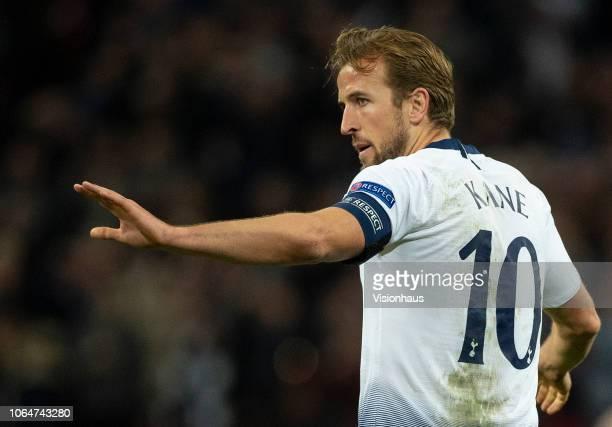 Harry Kane of Tottenham Hotspur celebrates scoring Tottenham's first goal during the Group B match of the UEFA Champions League between Tottenham...