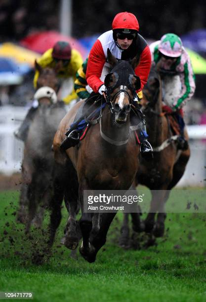 Harry Skelton riding Celestial Halo lead the way before going on to win The totesportcom National Spirit Hurdle Race at Fontwell racecourse on...