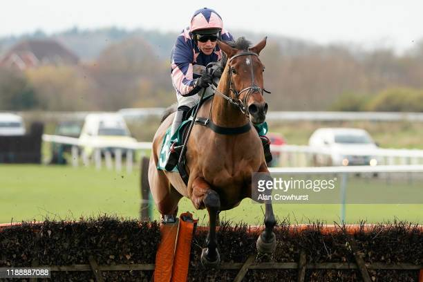 Harry Skelton riding Emmas Joy clear the last to win The Visit racingtv.com 'National Hunt' Novices' Hurdle at Warwick Racecourse on November 20,...