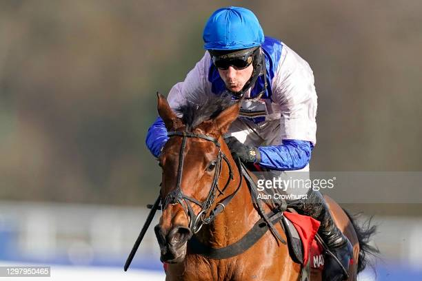 Harry Skelton riding Roksana clear the last to win The Matchbook Betting Podcast Mares' Hurdle at Ascot Racecourse on January 23, 2021 in Ascot,...