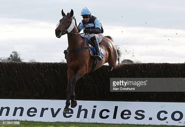 Harry Skelton riding Thinger Licht clear the last to win The totequadpot Handicap Steeple Chase at Fontwell racecourse on February 28 2016 in...