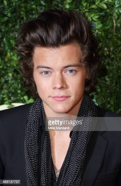 Harry Styles attends the British Fashion Awards 2013 at London Coliseum on December 2, 2013 in London, England.
