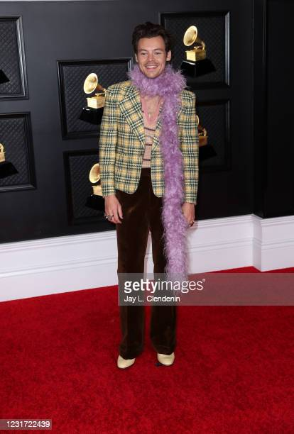 Harry Styles on the red carpet at the 63rd Annual Grammy Awards, at the Los Angeles Convention Center, in downtown Los Angeles, CA, Sunday, Mar. 14,...