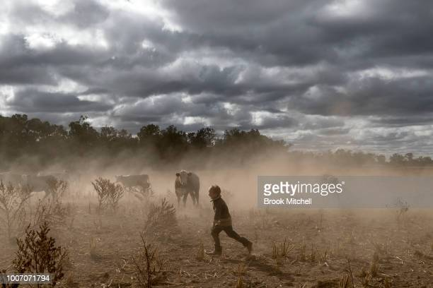 Harry Taylor plays on the dust bowl his family farm has become during the drought In the Central Western region of New South Wales Australia farmers...
