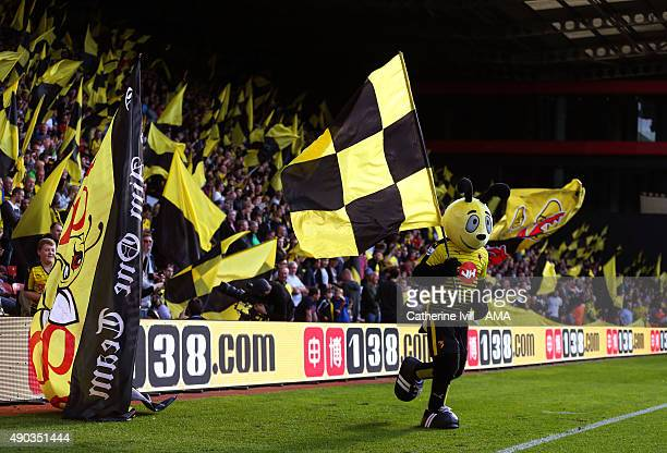 Harry the Hornet mascot of Watford runs off with a flag before the Barclays Premier League match between Watford and Crystal Palace at Vicarage Road...