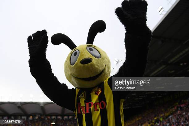 Harry the Hornet waves to the fans during the Premier League match between Watford FC and Manchester United at Vicarage Road on September 15 2018 in...